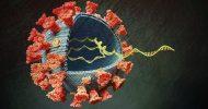 ডেল্টা ভ্যারিয়েন্টে যুক্তরাজ্যে করোনার 'তৃতীয় ঢেউ'